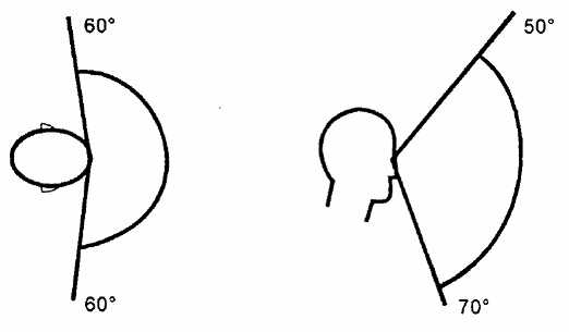 sentido de la vista auto electrical wiring diagraminstalacionesbus se u00f1alizaci u00f3n